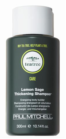 Tea Tree Lemon Sage Thickening Shampoo |Alberto Foco